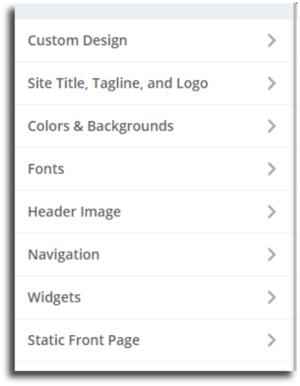 Customizer screenshot